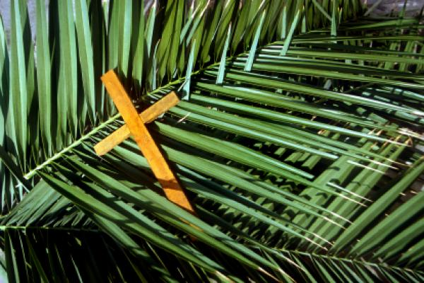 Religious clipart palm sunday - Pencil and in color religious ...